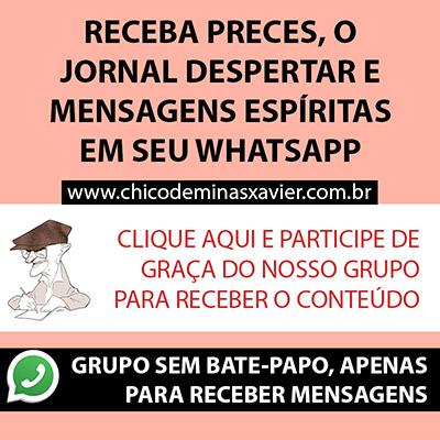 grupo whatsapp chico de minas xavier